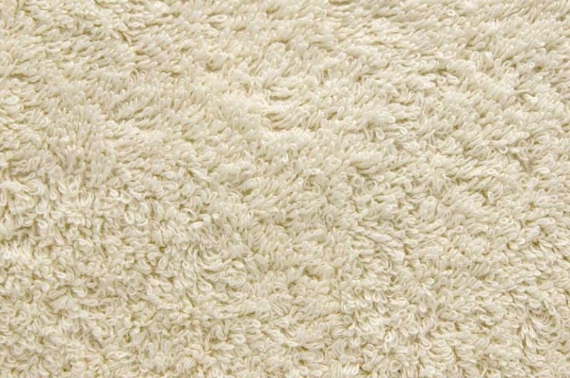 carpet floor covering